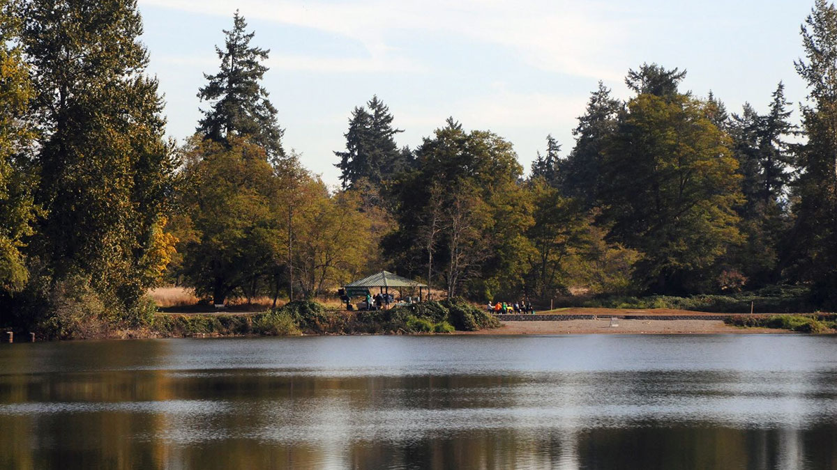 Waughop Lake, Lakewood, WA (photo courtesy of the City of Lakewood)